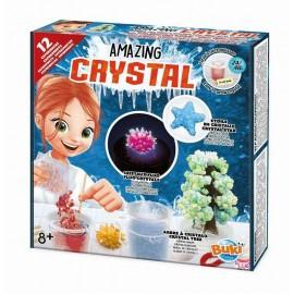 Niesamowite kryształy - 12 eksperymentów, Buki
