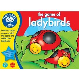 Biedroneczki - ladybirds gra