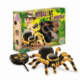 Zdalnie sterowana tarantula, Buki